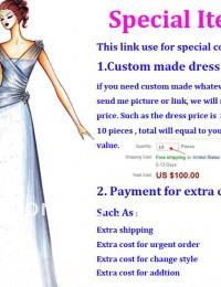 Link for Special Item